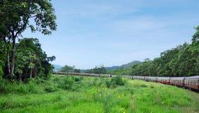 Kuranda scenisk järnväg i Queenland Australien royaltyfri foto