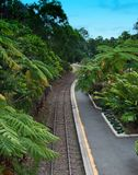 Kuranda Train to Cairns. View from the Kuranda-Cairns Train in Australia stock photography