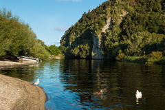 Kuratau River Lagoon Royalty Free Stock Photography