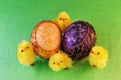 kurczątek Easter jajka Zdjęcia Royalty Free