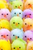 kurczątka kolorowy Easter Obrazy Royalty Free
