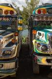 Kurczaków autobusów zbliżenie w San Pedro losie angeles Laguna Gwatemala Fotografia Stock