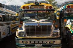 Kurczaków autobusów zbliżenie w San Pedro losie angeles Laguna Gwatemala Obraz Royalty Free