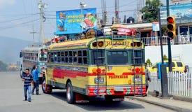 Kurczaków autobusy Fotografia Stock