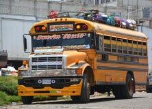 Kurczaków autobusy Obraz Royalty Free