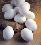 Kurczaków biali jajka Fotografia Royalty Free