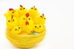 kurczaków Easter karmazynki gniazdeczko obrazy royalty free