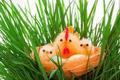 kurczaków Easter trawy gniazdeczko zdjęcie stock