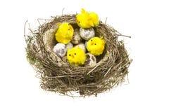 kurczaków jajek gniazdeczko Zdjęcia Royalty Free