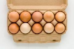 Kurczaków jajek tło, tło, kurczak jajka na Białym tle/jajek/ Zdjęcia Royalty Free