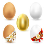 kurczaków jajka Obraz Royalty Free