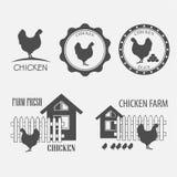 Kurczaków jajka i gospodarstwo rolne Obrazy Royalty Free