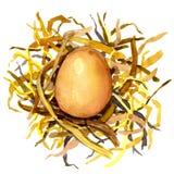 Kurczaków jajka w gniazdeczku słoma ilustracji