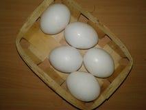 Kurczaków jajka w gracie greenfield fotografia stock