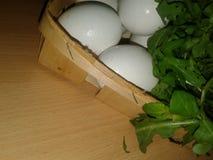 Kurczaków jajka w gracie greenfield zdjęcia royalty free