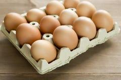 Kurczaków jajka w jajecznej filiżance Obraz Royalty Free
