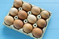 Kurczaków jajka w jajecznej filiżance Obrazy Stock
