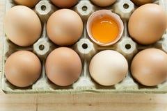 Kurczaków jajka w jajecznej filiżance Zdjęcia Royalty Free