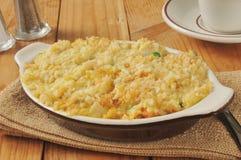 Kurczaków ryż potrawka Fotografia Stock