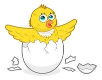 Kurczak ilustracji