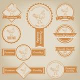 Kurczak etykietki Mięsny projekt Obraz Royalty Free