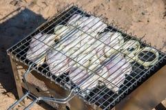 Kurczak i cebula na grillu fotografia royalty free