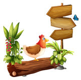 Kurczak i motyl blisko drewnianych strzała Obrazy Royalty Free