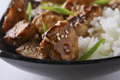 Kurczak i ryż w azjaty stylu obraz royalty free