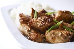 Kurczak i ryż w azjaty stylu obrazy stock
