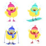 Kurczak i zima sportów jazda na snowboardzie, łyżwiarstwo, narciarstwo wektor royalty ilustracja