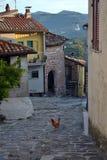 Kurczak na bruku antyczna wąska nawa mały Włoski miasteczko zdjęcia royalty free