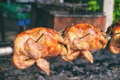 Kurczak na mierzei Zdjęcie Royalty Free