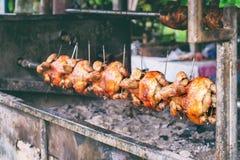 Kurczak na mierzei Obrazy Stock