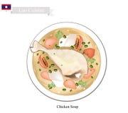 Kurczak polewka, Popularny naczynie w Lao royalty ilustracja