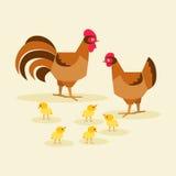 Kurczak rodziny ptak również zwrócić corel ilustracji wektora Zdjęcie Royalty Free