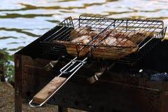 Kurczak smaży na BBQ Fotografia Stock