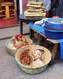 kurczak sprzedaży Zdjęcie Royalty Free