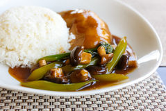 Kurczak z ryż i pieczarkami sałatkowymi fotografia stock