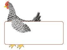 Kurczak z sztandarem Zdjęcie Royalty Free