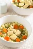 kurczak zup warzywnych Fotografia Royalty Free