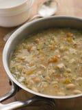 kurczaka domu wiejskiego zup warzywnych Obraz Stock