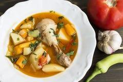 Kurczaka gulasz z warzywami Obraz Royalty Free