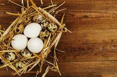 Kurczaka i przepiórki jajka na drewnianym stole tło barwiący Easter jajek eps8 formata czerwony tulipanu wektor Obrazy Stock