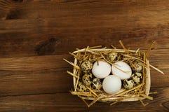 Kurczaka i przepiórki jajka na drewnianym stole tło barwiący Easter jajek eps8 formata czerwony tulipanu wektor Obrazy Royalty Free