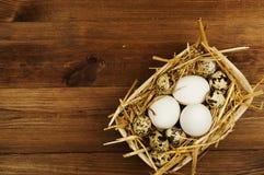 Kurczaka i przepiórki jajka na drewnianym stole tło barwiący Easter jajek eps8 formata czerwony tulipanu wektor Zdjęcia Stock
