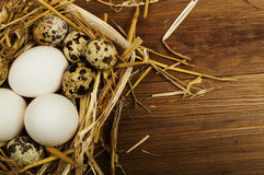 Kurczaka i przepiórki jajka na drewnianym stole tło barwiący Easter jajek eps8 formata czerwony tulipanu wektor Fotografia Stock