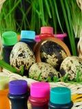 Kurczaka i przepiórki jajka w koszu otaczającym karmowymi koloryt Obraz Stock