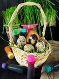 Kurczaka i przepiórki jajka w koszu otaczającym karmowymi koloryt Obraz Royalty Free