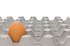 Kurczaka jajka tace Obrazy Stock