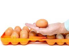 Kurczaka jajko w palmie ręka na tle Obraz Royalty Free